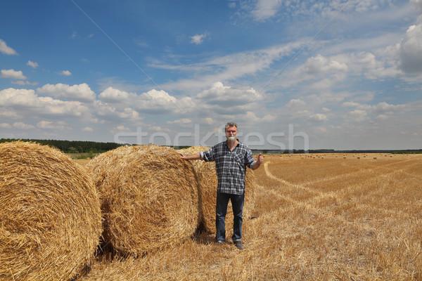 Agricultor examinar campo de trigo cosecha paca Foto stock © simazoran