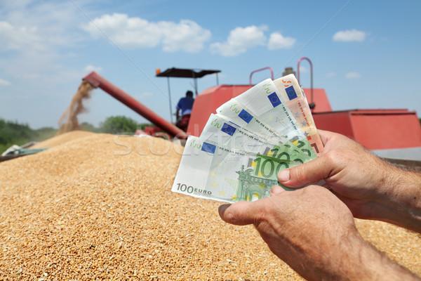 Agricultural concept Stock photo © simazoran