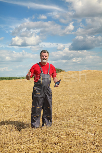 Farmer or agronomist inspect in wheat field after harvest Stock photo © simazoran