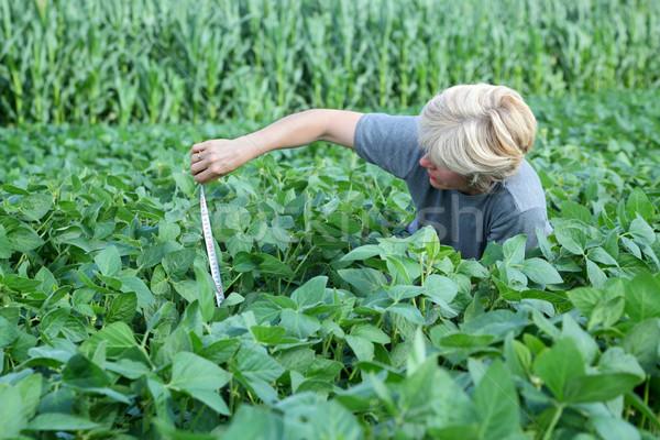 Agrártudomány női mezőgazdasági szakértő minőség szója Stock fotó © simazoran