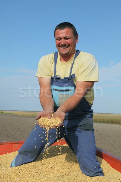 урожай работник соя бобов трактора Сток-фото © simazoran