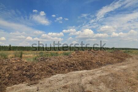 自然 肥料 牛 フィールド 準備 ストックフォト © simazoran