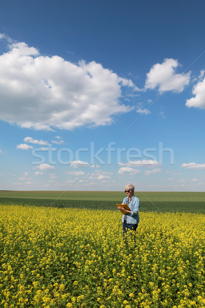 Female agronomist examining blossoming rapeseed field Stock photo © simazoran