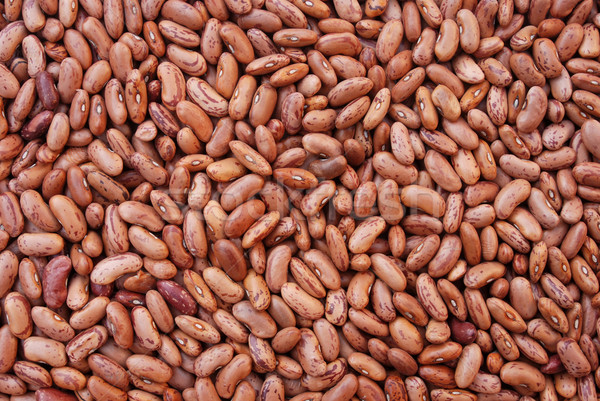 Brown bean Stock photo © simazoran