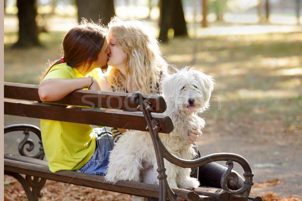Fiatalok fiatal pér fehér kutya pad lány Stock fotó © simazoran
