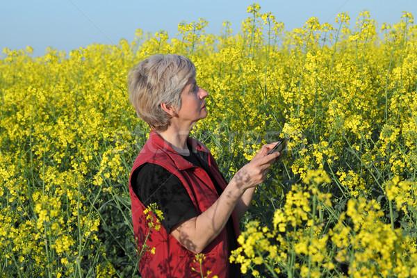 Female farmer examine blossoming rapeseed field Stock photo © simazoran