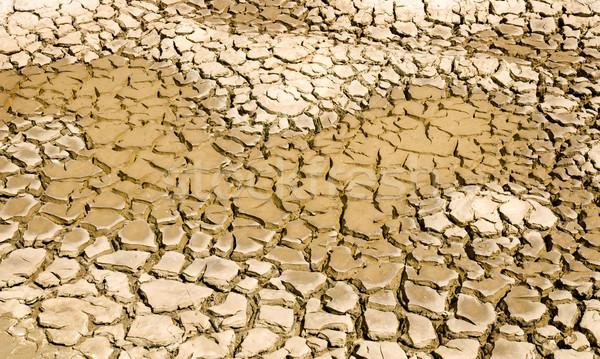 Kuraklık sarı çamur manzara arka plan Stok fotoğraf © simazoran