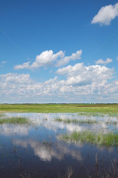 Rural area Stock photo © simazoran