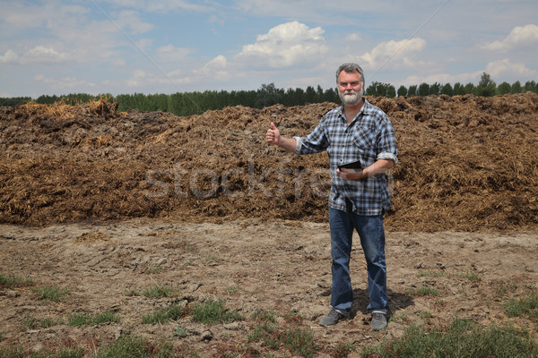 Természetes műtrágya tehén mező gazda megvizsgál Stock fotó © simazoran