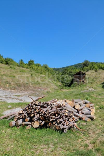 Tűzifa halom hegy Szerbia Európa fa Stock fotó © simazoran