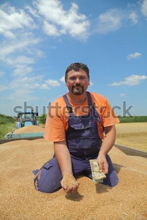 Agriculture récolte soja bean domaine nuages Photo stock © simazoran