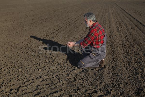 Mezőgazdaság gazda megművelt mező minőség föld Stock fotó © simazoran