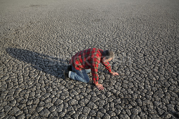 Man and drought Stock photo © simazoran