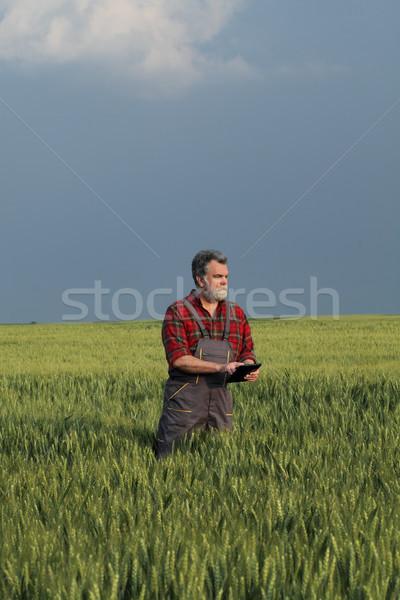 сельского хозяйства фермер таблетка качество Сток-фото © simazoran