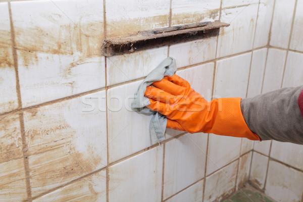 Cleaning Stock photo © simazoran