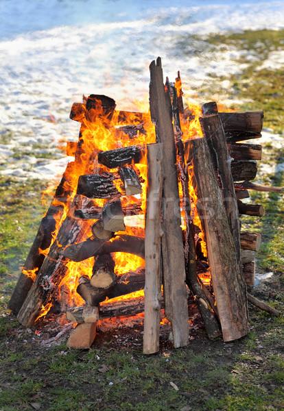 Fuoco brucia grande legno Foto d'archivio © simazoran