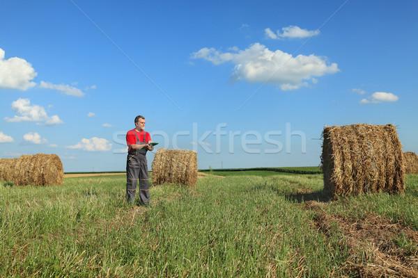 Landbouwer baal hooi veld vroeg zomer Stockfoto © simazoran
