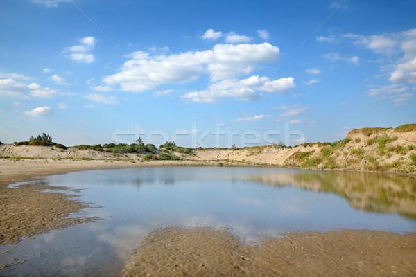 Marsh landscape Stock photo © simazoran