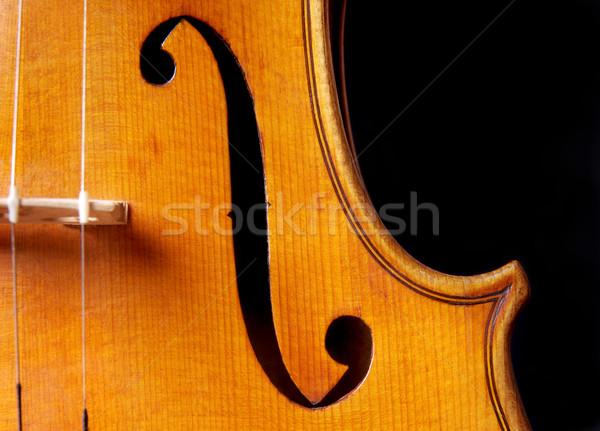 バイオリン 音楽 クローズアップ 穴 孤立した 黒 ストックフォト © simazoran