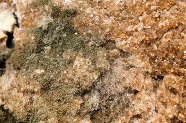 Aşırı doğa yeşil ekmek Stok fotoğraf © simazoran