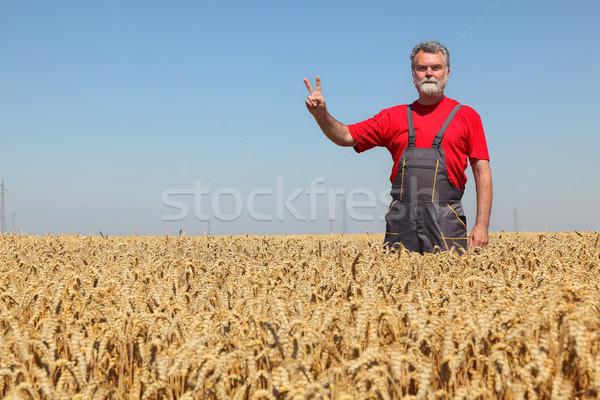 Agriculture agriculteur signe de la main prêt Photo stock © simazoran