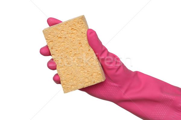 Cleaning equipment, sponge in hand Stock photo © simazoran
