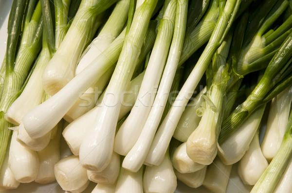 Young onion Stock photo © simazoran