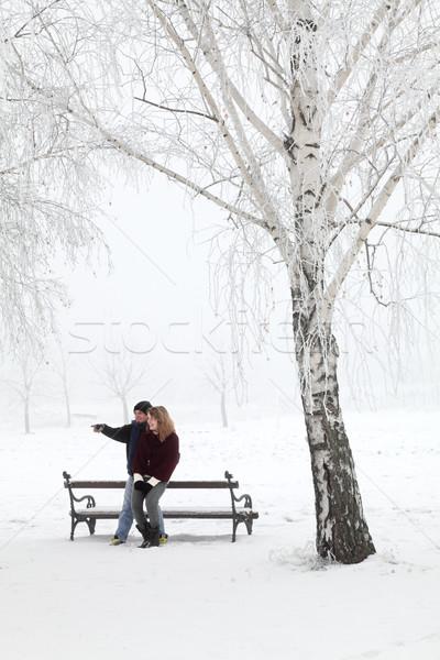 Tini pár szórakozás hó park szeretet Stock fotó © simazoran