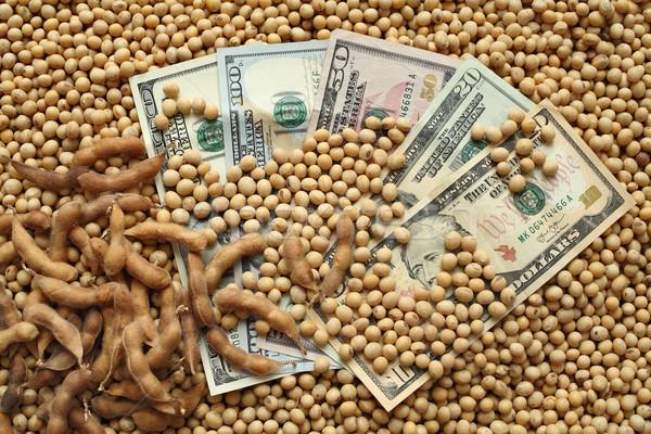 Foto stock: Agrícola · soja · dinheiro · soja · feijões