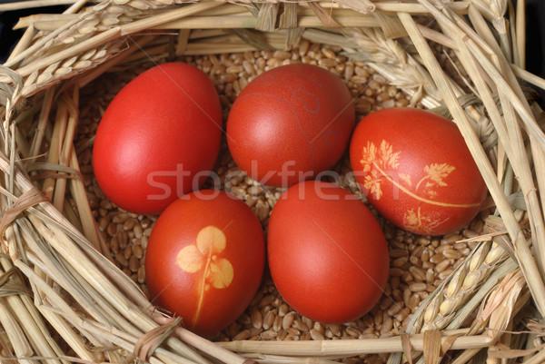 Pascua rojo huevo de Pascua trigo nido Foto stock © simazoran