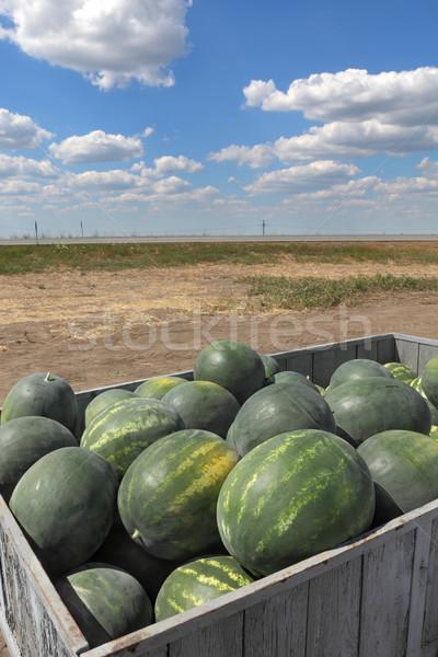 Anguria frutta pronto vendita trattore Foto d'archivio © simazoran