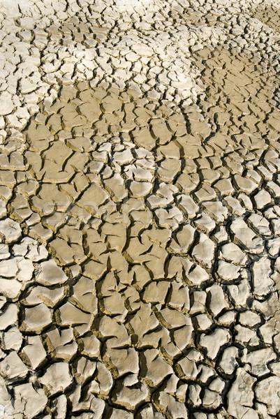Cracked land Stock photo © simazoran