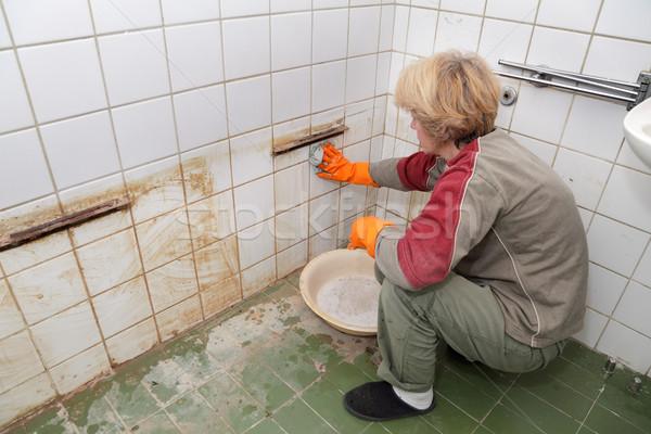 Cleaning woman Stock photo © simazoran