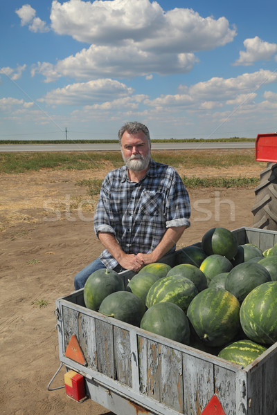 Farmer and watermelons at trailer, farmers market Stock photo © simazoran