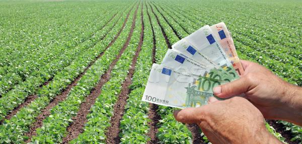 Mezőgazdasági emberi kéz tart Euro bankjegy zöld Stock fotó © simazoran