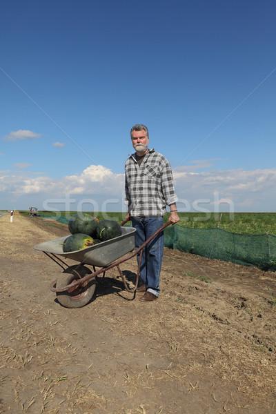 Landbouwer watermeloen kruiwagen vervoer hoop voedsel Stockfoto © simazoran