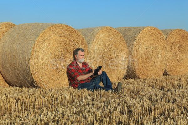 ストックフォト: 農家 · 調べる · 麦畑 · 収穫 · タブレット · 俵