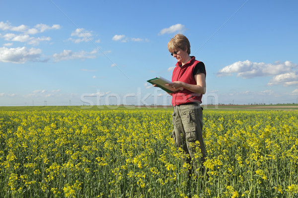 Agriculture, farmer or agronomist in oilseed field Stock photo © simazoran