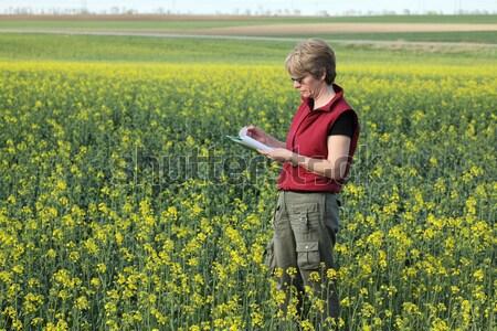Agrártudomány mezőgazdasági szakértő minőség olaj nemi erőszak Stock fotó © simazoran