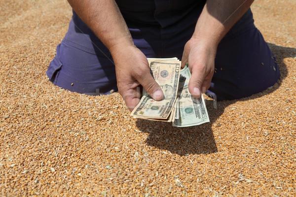 農業の 農家 手 ドル ストックフォト © simazoran
