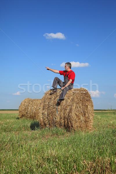 Agriculteur bale foin domaine séance Photo stock © simazoran