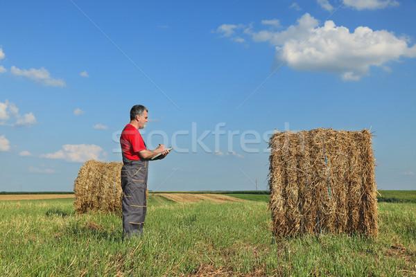 Farmer and bale of hay in field Stock photo © simazoran