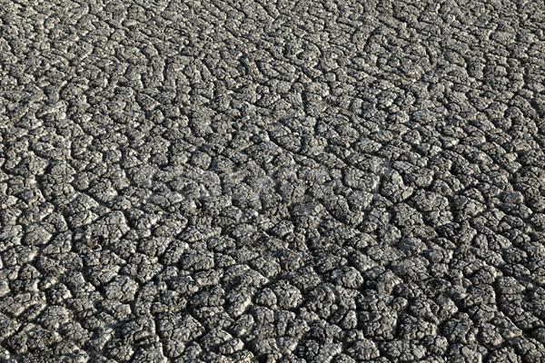 Dry land texture Stock photo © simazoran