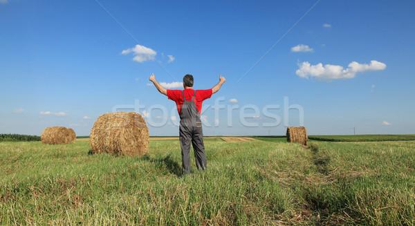 Gazda bála széna mező gesztikulál hüvelykujj Stock fotó © simazoran