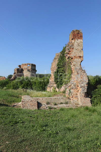 Fortaleza Serbia Europa medieval destruido Foto stock © simazoran
