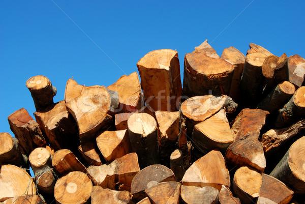 Brandhout hoop hout verwarming blauwe hemel bos Stockfoto © simazoran