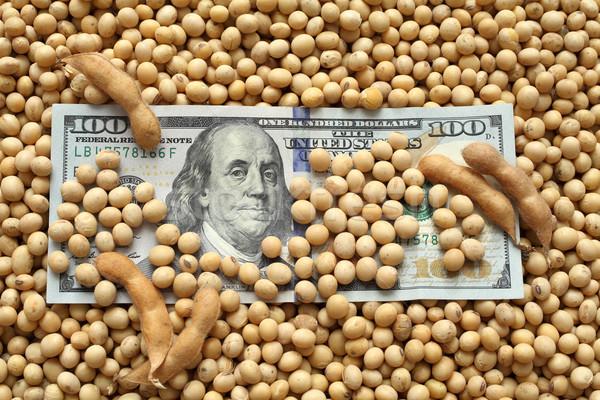 Foto d'archivio: Agricola · soia · dollaro · soldi · soia