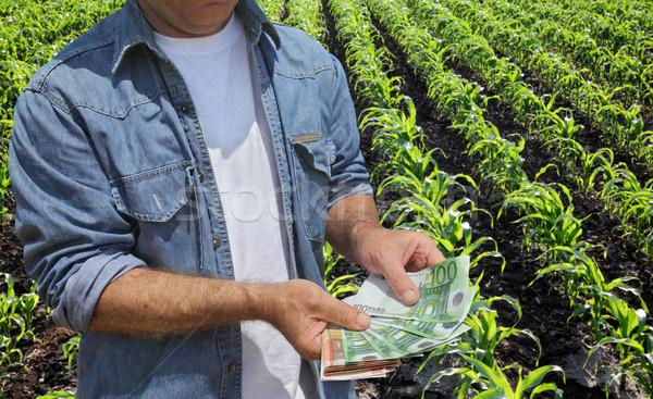 Mezőgazdasági gazda pénz mező tart Euro Stock fotó © simazoran