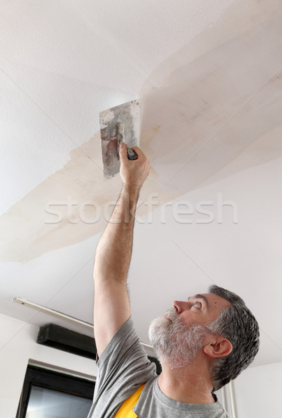 Worker repairing plaster at ceiling Stock photo © simazoran
