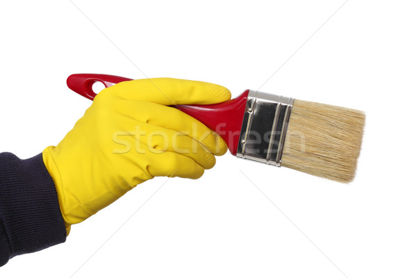 Foto stock: Mano · humana · guante · mantener · pincel · pincel · aislado